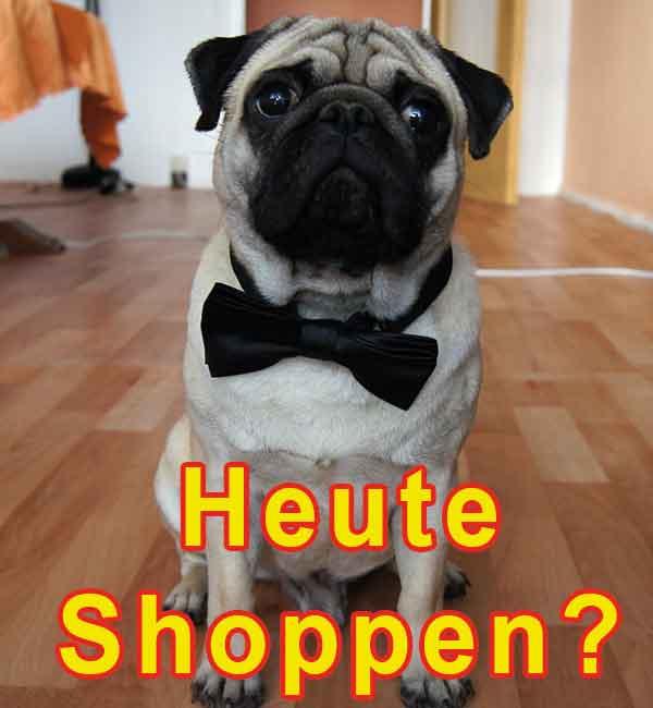 Günstige Damen Marken Handtaschen - Ledertaschen Designer Taschen und Accessoires zum Jubiläumsverkauf bei Dellwig Lederwaren in Hamm